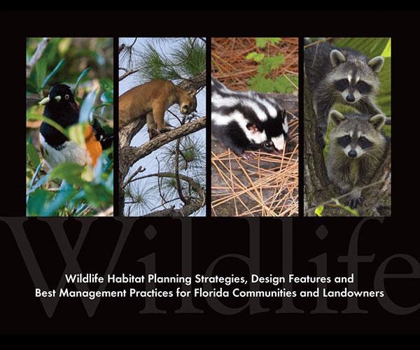 Wildlife Planning