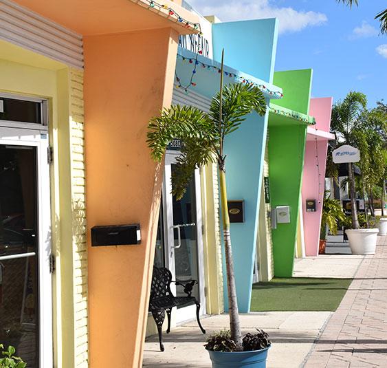 Protecting Palm Beach