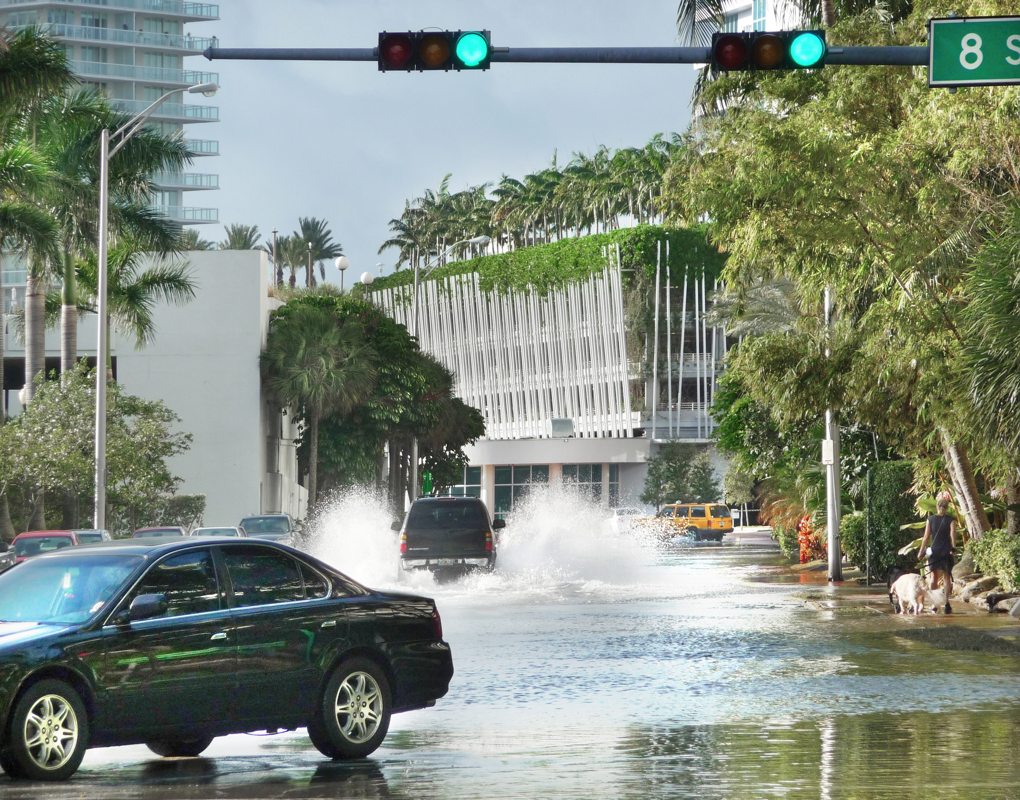 Florida Flood Planning